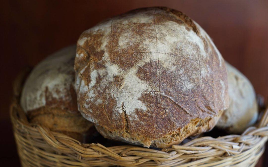 Buono Come il Pane: 7 Buone Ragioni per Mangiare Pane
